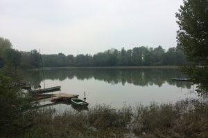 Terre di Po e dei Gonzaga: itinerario in bassa reggiana