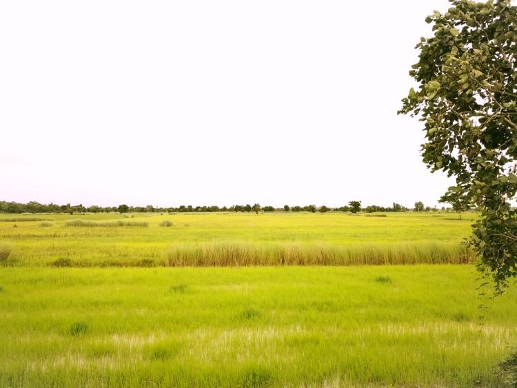 I paesaggi di Battamang